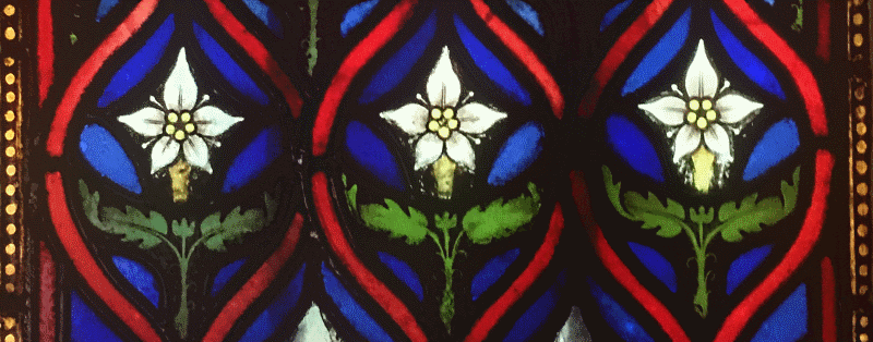 stained glass image of white flowers