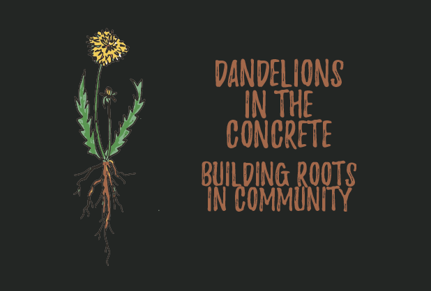Dandelions in the Concrete